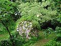 Giardino di Ninfa 40.jpg