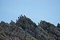 Gipfelgrat Rote Wand4.JPG