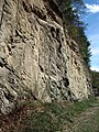 Gneiss (Precambrian; Rt. 93 roadcut next to the New River, Mouth of Wilson, Virginia, USA) 1 (30114930744).jpg