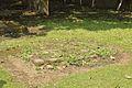 Grave - Dutch Cemetery - Chinsurah - Hooghly 2017-05-14 8447.JPG