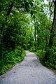 Gravel Trail (2591275603).jpg