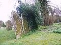 Gravestones at St Mary's Church, Winterborne Whitechurch - geograph.org.uk - 710403.jpg