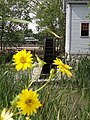 Greenfield Village - The Henry Ford - Dearborn MI (7731165514).jpg
