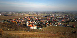 Gumpoldskirchen.general view.jpg
