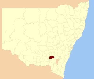 Gundagai Shire Local government area in New South Wales, Australia