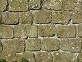 Hadrian's Wall nearTurret 26b (Brunton) - geograph.org.uk - 1224293.jpg