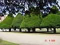 Hampton Court 2009 - panoramio.jpg