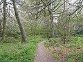 Harebreaks Wood - geograph.org.uk - 1834166.jpg