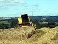 Harvesting at Hall Royd - geograph.org.uk - 519161.jpg