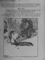 Harz-Berg-Kalender 1921 018.png