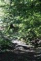 Harz Wanderung Stecklenberg - Hexentanzplatz - Thale - panoramio (1).jpg