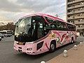 Hello Kitty Shinkansen livery, Chugoku JR Bus.jpg
