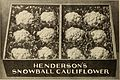Henderson's wholesale catalogue. - seeds, implements, fertilizers, insecticides &c. for market gardeners and truckers (1911) (14784333772).jpg