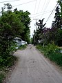 Hidden Avenue (2547461760).jpg