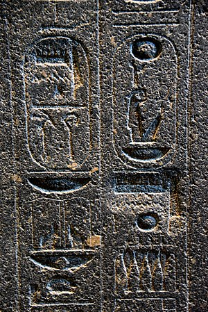 Atenism - Hieroglyphs on the backpillar of Amenhotep III's statue. There are 2 places where Akhenaten's agents erased the name Amun, later restored on a deeper surface. The British Museum, London