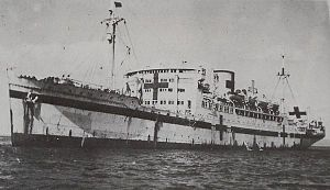 Shipping Control Authority for the Japanese Merchant Marine - Japanese hospital ship Hikawa Maru
