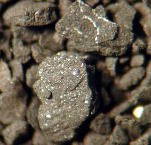 Horn River Formation - Drill cuttings sample seen through microscope