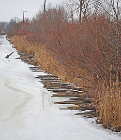 Corduroy segment, image taken from Harbin Drive bridge looking north up Silver Creek, from Wikipedia entry