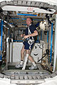 ISS-30 André Kuipers exercises on the COLBERT treadmill.jpg