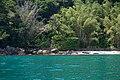 Ilha-das-couves-ubatuba-180921-038.jpg
