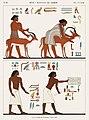 Illustration from Monuments de l'Egypte de la Nubie by Jean-François Champollion, digitally enhanced by rawpixel-com 65.jpg