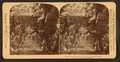In the heart of a banana plantation, Hawaiian Islands, by Strohmeyer & Wyman.png