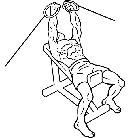 12 Cable Pulley Exercises That Train Your Entire Body 12 Cable Pulley Exercises That Train Your Entire Body new images