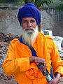 India-0421 - Flickr - archer10 (Dennis).jpg