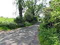 Ingarsby Lane - geograph.org.uk - 186771.jpg