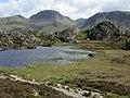 Innominate Tarn - geograph.org.uk - 3095.jpg