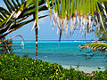 Inside the Reef Cayman.jpg