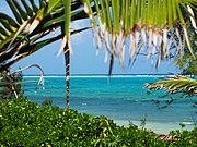 Inside the Reef Cayman