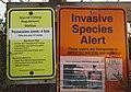 Invasive Species Alert and Special Fishing Regulations - Upper Red Lake, Minnesota (37642387111).jpg