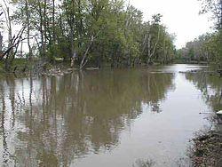 Iroquois River.jpg