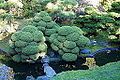 Japanese Tea Garden (San Francisco) - DSC00215.JPG