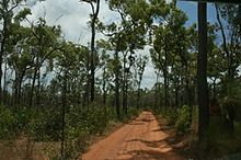 Jardine River National Park, Cape York, Australia.