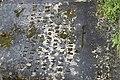 Jazeneuil Tombe 658.jpg