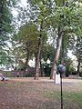 Jeroen Boschtuin 's-Hertogenbosch.jpg