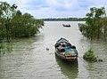 Kaikhali Sundarbans 15-09-2011 (1).JPG