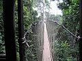Kakum Canopy Walk.jpg