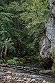 Kanjon Prače 4.jpg