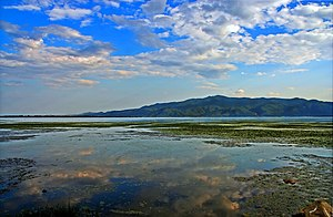 Lake Kerkini - Image: Kerkini lake 2