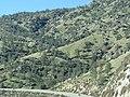 Kern County, CA, USA - panoramio (61).jpg