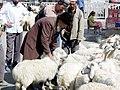 Khotan-mercado-d05.jpg
