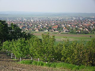 Kladovo Town and municipality in Southern and Eastern Serbia, Serbia