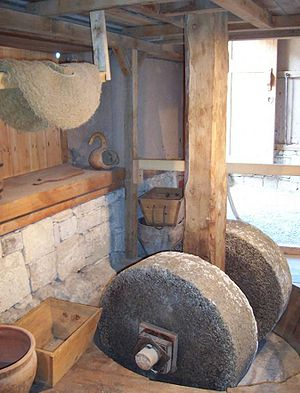 Urla, İzmir - Interior of the olive oil production workshop restored by Ege University.