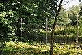 Klein-Glienicke Invisible fence.jpg