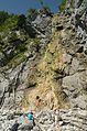 Klinserfall, Totes Gebirge.jpg