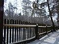 Koniec zimy w połowie marca - Wolica las - 09 - panoramio.jpg