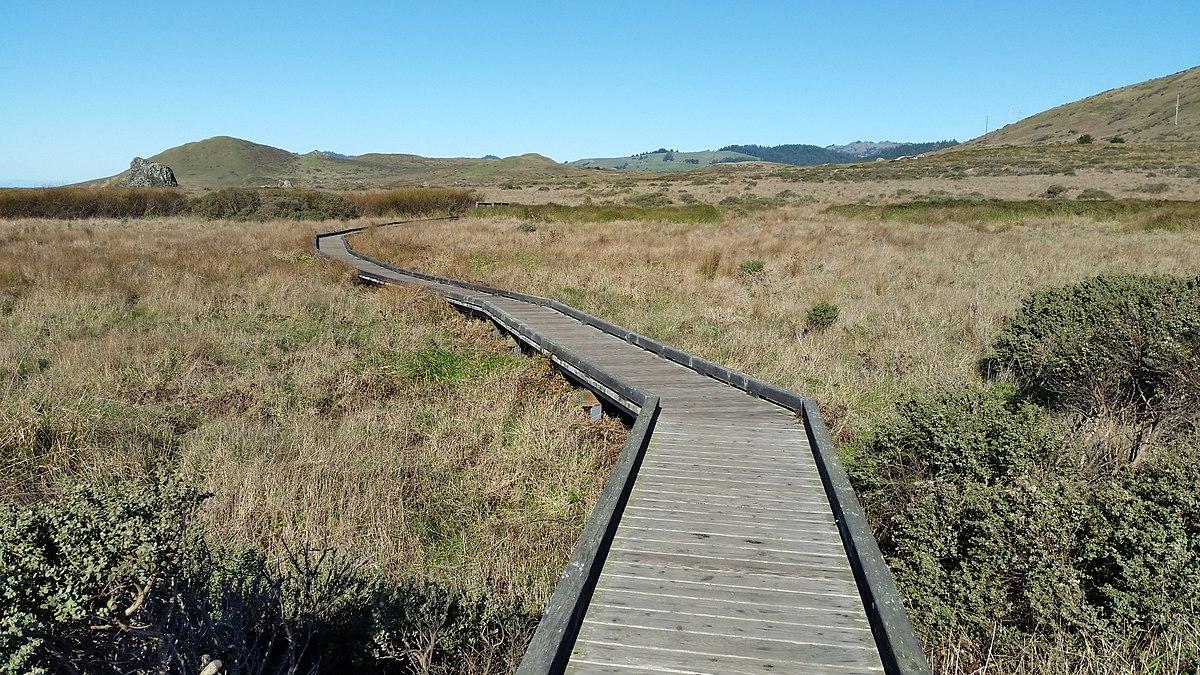 Sonoma Coast State Park - Wikipedia